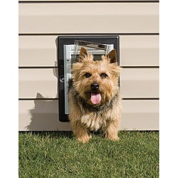 PetSafe Small Adjustable Sill Non-rusting Aluminum Wall-entry Pet Door