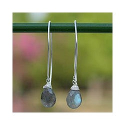 Labradorite 'Sublime' Earrings (Thailand)