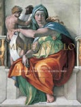 Michelangelo: The Complete Sculpture, Painting, Architecture (Hardcover)