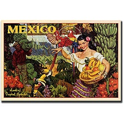 'Mexico' Gallery-wrapped Canvas Art