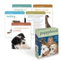 Puppyhood Deck: 50 Tips for Raising the Perfect Dog (Cards)