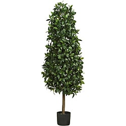 Sweet Bay 5-foot Pyramid Silk Tree