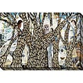 Judy Paul 'Get Out I' Oversized Canvas Art