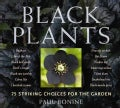 Black Plants: 75 Striking Choices for the Garden (Paperback)