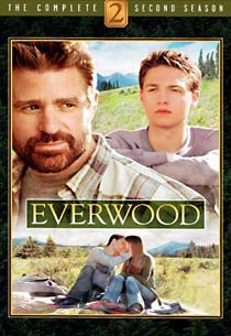 Everwood: The Complete Second Season (DVD)