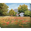 Karen Wilkerson 'Poppy Fields' Oversized Canvas Art
