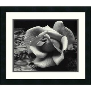 Ansel Adams 'Rose and Driftwood, San Francisco, California, 1932' Framed Art Print
