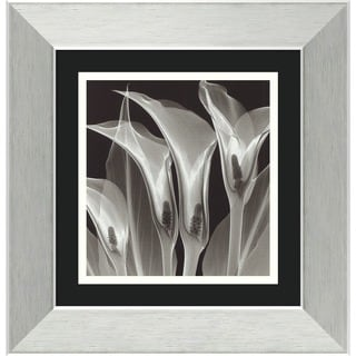 Steven N. Meyers 'Four Callas #3' Framed Art Print