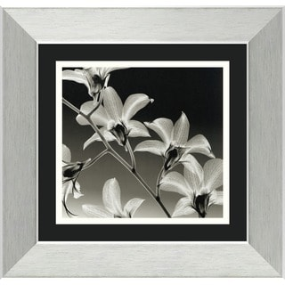Steven N. Meyers 'Orchid Denrobium' Framed Art Print