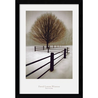 David Lorenz Winston 'Solitude' Framed Wall Art Print