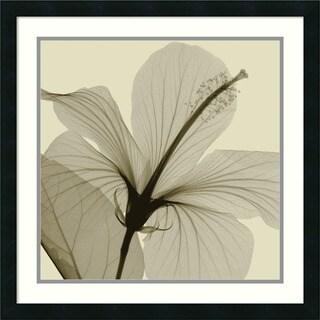 Steven N. Meyers 'Hibiscus' Framed Art Print