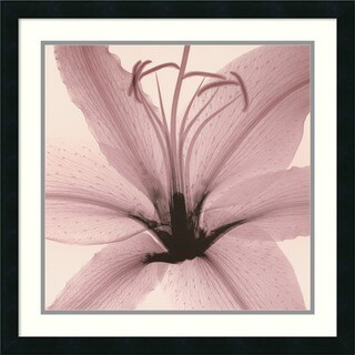Steven N. Meyers 'Lily' Framed Art Print
