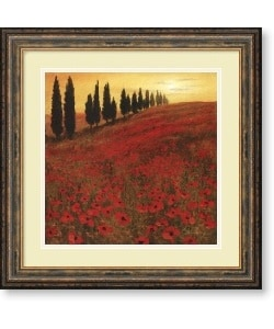Steve Thoms 'Poppies' Square Framed Art Print