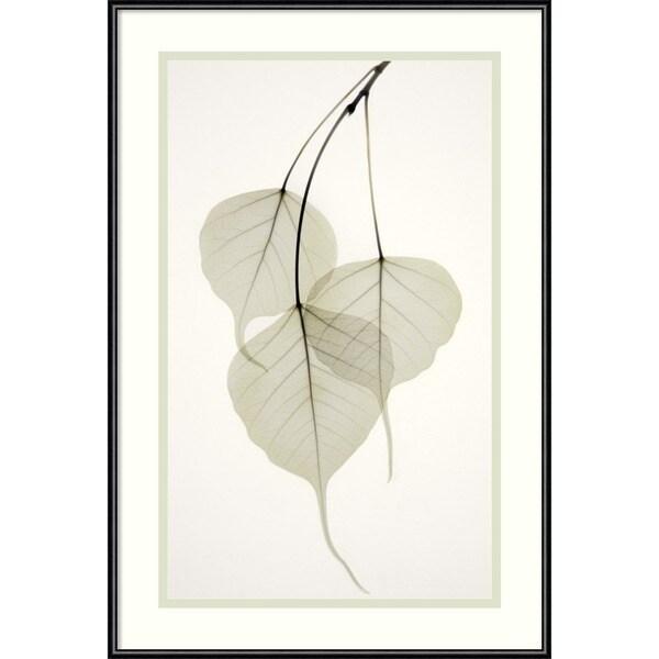 Albert Koetsier 'Bo Tree' Framed Art Print