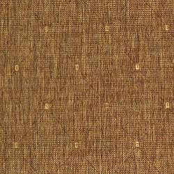 Indoor/ Outdoor Summer Brown/ Natural Rug (5'3 x 7'7)
