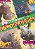 Hippos And Rhinos (DVD)