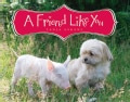 A Friend Like You (Hardcover)
