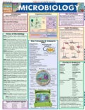 Microbiology (Wallchart)