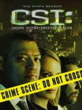 CSI: Crime Scene Investigation: The Complete Ninth Season (DVD)