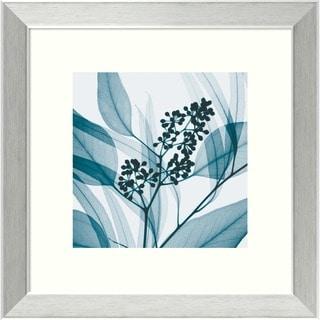 Steven N. Meyers 'Eucalyptus I' Framed Art Print
