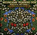 Various - Wednesday Morning Dew- Realistic Patterns Volume 2: Orchestrated Psych from The USA