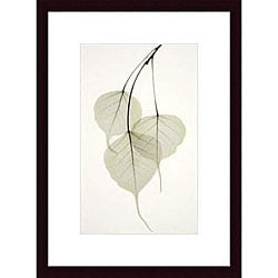 Albert Koetsier 'Bo Tree' Wood Framed Art Print