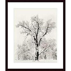 Ansel Adams 'Oak Tree' Wood Framed Art Print