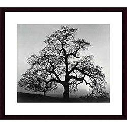 Ansel Adams 'Oak Tree, Sunset City, California' Art Print