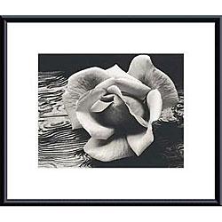 Ansel Adams 'Rose and Driftwood' Metal Framed Art Print