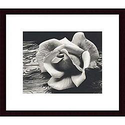 Ansel Adams 'Rose and Driftwood' Wood Framed Art Print