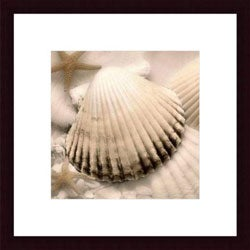 Donna Geissler 'Iridescent Seashell II' Framed Art Print