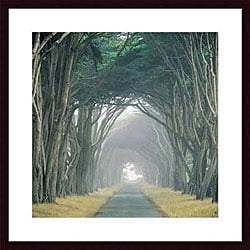 E. Loren Soderberg 'Corridor of Cypress' Wood Framed Art Print