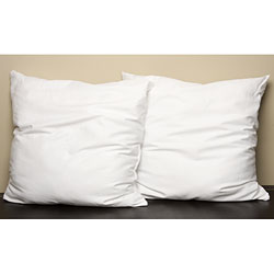 Polyester Euro-size Pillows (Set of 2)