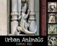 Urban Animals (Paperback)