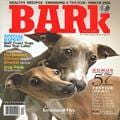The Bark, 6 issues for 1 year(s)