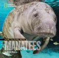 Face to Face with Manatees (Hardcover)