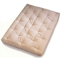 Evolution Spring 1 Queen-size Microfiber Futon Mattress