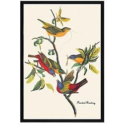 John James Audubon 'Painted Bunting' Framed Print Art