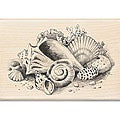 Inkadinkado Wood-mounted 'Seashells Still Life' Rubber Stamp