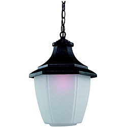 Sea Gull Lighting Urbana Black 1-light Outdoor Pendant