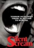 Silent Scream (DVD)