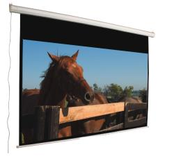 Mustang Electric 120-inch 16:9 Matte White Projection Screen