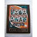 Miami Dolphins Team Picture Plaque