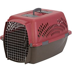 Aspen Pet Large Taxi Fashion Pet Carrier