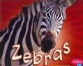 Zebras (Paperback)