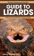 Guide to Lizards: More Than 300 Essential-to-Know Species (Paperback)