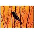 Patty Tuggle 'Blackbird Dreams II' Gallery-wrapped Canvas Art
