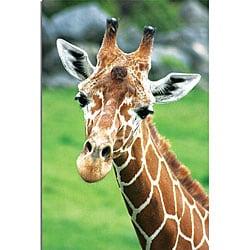 Patty Tuggle 'Giraffe Hello' Canvas Art