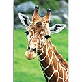 Patty Tuggle 'Giraffe Hello' Canvas Art