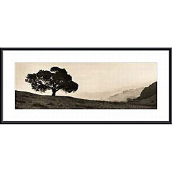 Alan Blaustein 'Black Oak Tree' Metal Framed Art Print